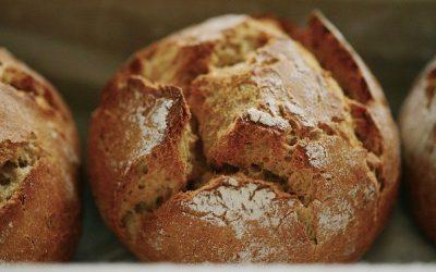 Selbstgemachte Brötchen – wie frisch vom Bäcker